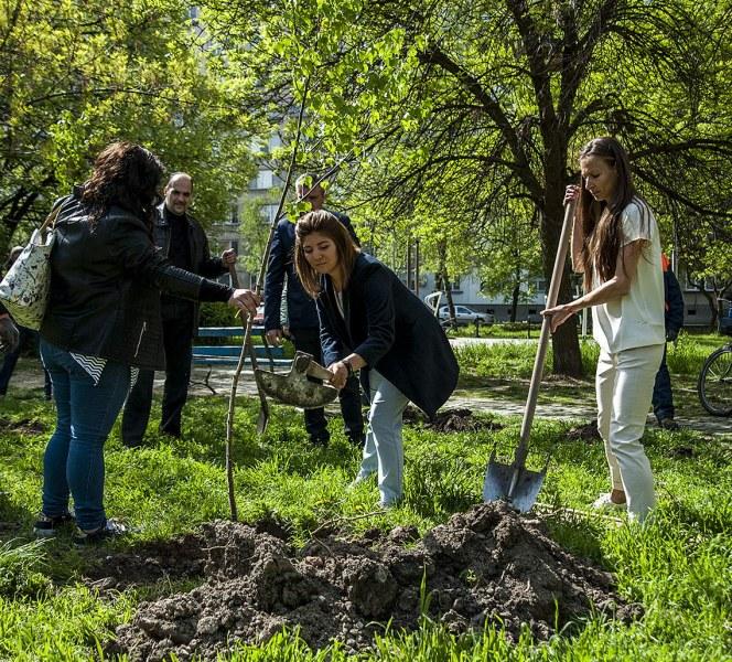 Нова еко инициатива обогатява кв. Гагарин с дървета и декоративна растителност