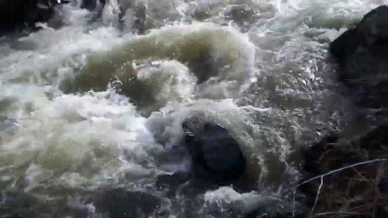 Огромни вълни разпениха Дунав