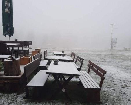 Изненада: Пампорово се събуди със снежна покривка
