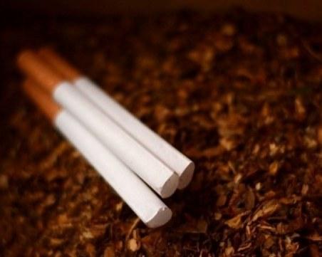 Иззеха безакцизен тютюн от къща в Шекера