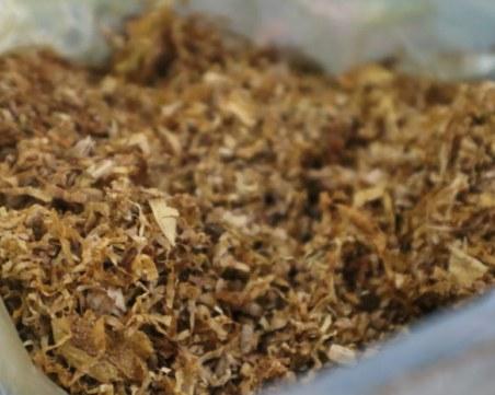 Спипаха пловдивчанка с голямо количество безакцизен тютюн