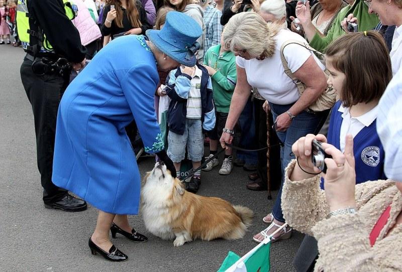 Кралица Елизабет II има ново кученце, подарено за 100-годишнината на покойния ѝ съпруг