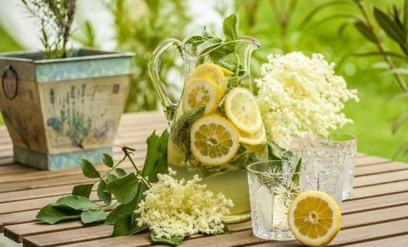 Лесна рецепта за сироп от бъз - хитова напитка за горещите дни