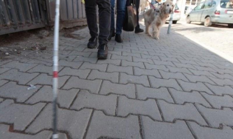 Незрящо момче с куче водач си намери дом с помощта на социалните мрежи