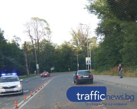 Сухо дърво се стовари върху кола на възлова улица в