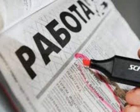 Търсите работа? Обявиха стотици свободни работни места в Пловдив и региона