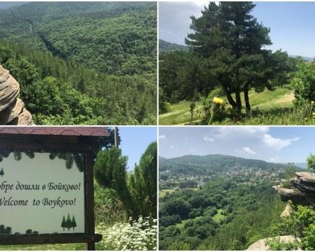 Величествени скали разкриват красиви гледки край Пловдив