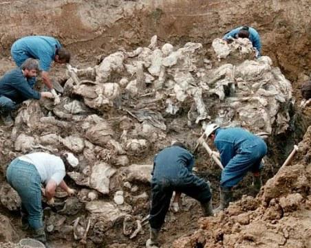 На този ден: Клането в Сребреница