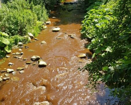 Река в Пловдивска област потече в кафяво, носи мъртва риба