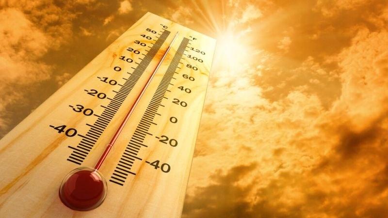 Близо 50-градусови жеги налегнаха Турция