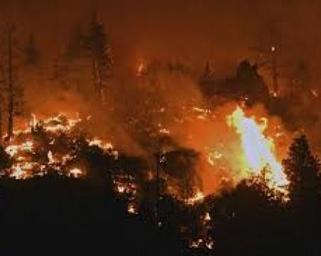 Пожар пламна в Сакар планина