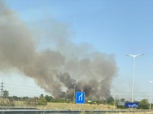 Нов пожар в Пловдив! Горят ниви на Цариградско шосе