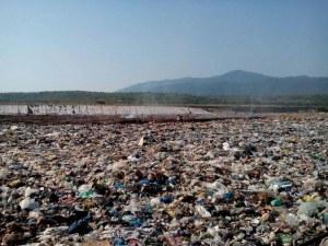 Потушиха пожара на сметището в Асеновград