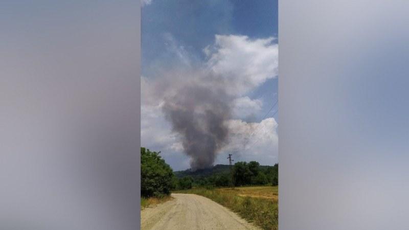 Гръмотевица подпали борова гора край Стара Загора