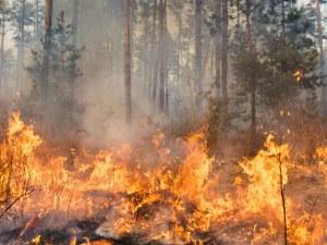 Разраства се огънят край хасковското село Брягово