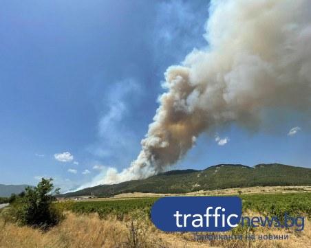 Масивен пожар обхвана карловска гора, мобилизират пловдивски огнеборци