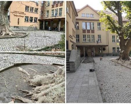 Започна ремонтът на двора на Музикалното училище