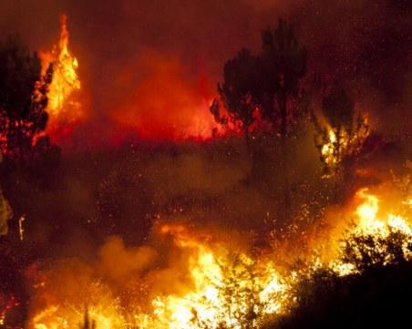 България изпраща помощ на Северна Македония за справяне с пожарите