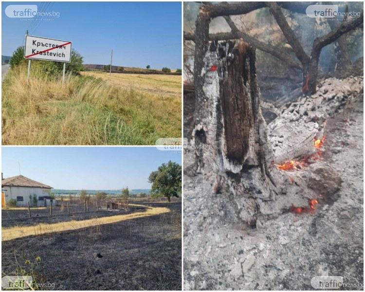 Жители на Кръстевич след пожара: Нямаше с какво да гасим огъня, пламъци заплашваха домовете ни