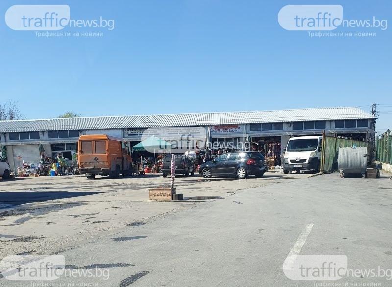 Незаконен търговец на животни от Пловдив отърва солена глоба, причина – опорочен акт