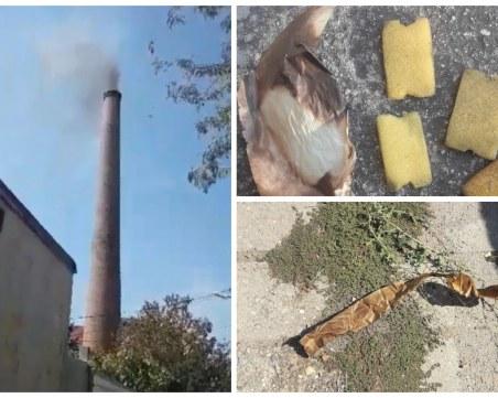 Комин затрупа със сажди и боклуци пловдивски квартал, фирмата отрича да има общо