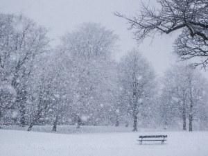 Първи сняг още тази седмица? Синоптици очакват снежинки по високите върхове