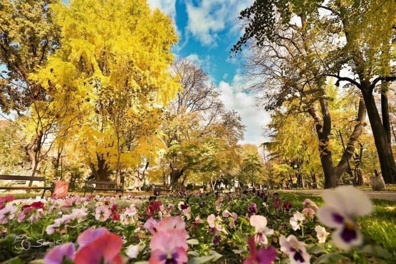 Предимно слънчево в Пловдив днес, градусите се вдигат малко