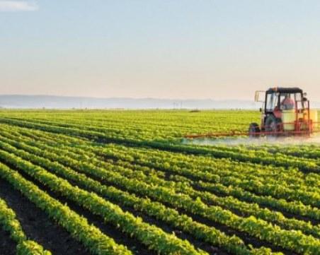 Близо 50 хил. земеделци и животновъди ще бъдат подкрепени със 70 млн. лева заради Ковид кризата