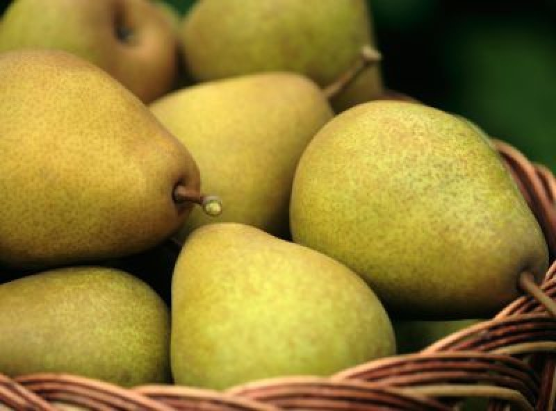 Есенна диета с круши – отслабвате 4 кг за седмица
