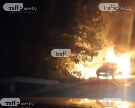 Кола гори на пътя Кърджали-Хасково, подпали се и гората