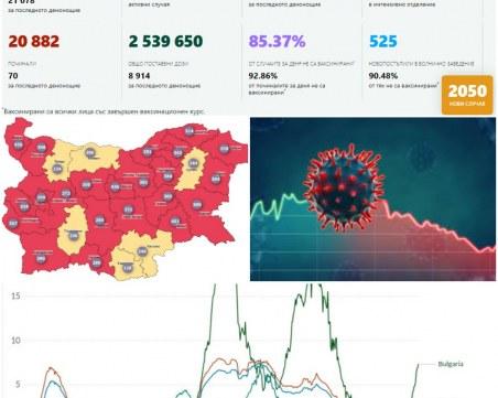 COVID в цифри или как България изкриви статистиката
