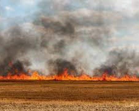 Пламнаха 2000 декара във Великотърновско
