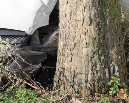 Млад мъж заби колата си в дърво край Пазарджик, почина намясто