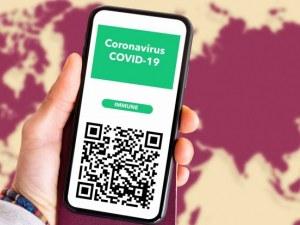 Заповедта за зеления сертификат - двоен аршин, липса на информация и никаква технология! Резултатът - абсолютен хаос