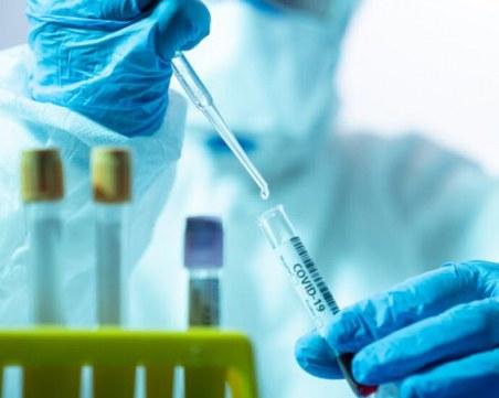 Пациентски организации настяват за програма изследване на клетъчен имунитет